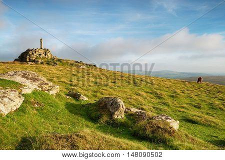 Widgery Cross On Dartmoor