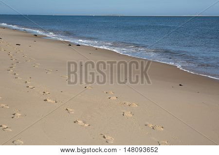 Set Of Footprints Leading To The Ocean