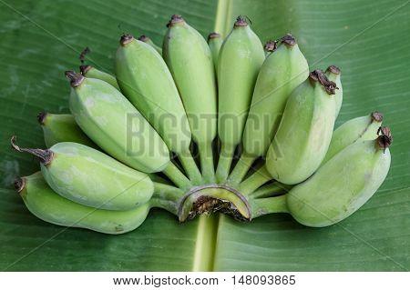 closeup green banana on banana leaf background