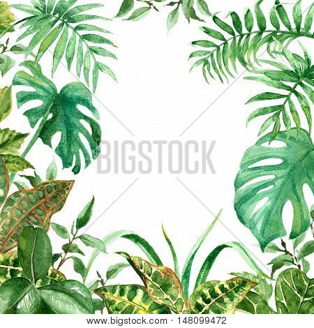 Raster colorful green tropic frame made with most favorite leaves and stalks. Decoration for different printed goods, illustration and design element, pattern for postcards.