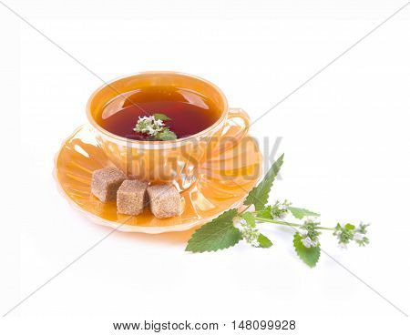 Tea with flowers of peppermint. Tea with mint in a golden cup. Curative tea with mint. Tea with mint and sahorom izalirovanny