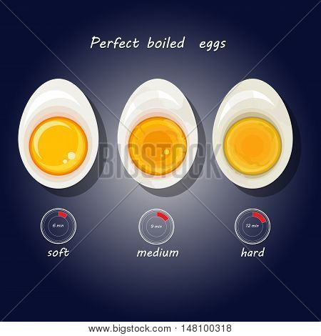 Vector illustration of hard-boiled eggs. Hand drawn kitchen info graphic.
