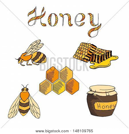 Honey bee set text graphic art yellow brown color isolated illustration vector