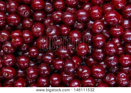 Purified and washed cherries in a box