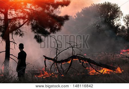 Boy in forest fire smoke watching the fire at sunset