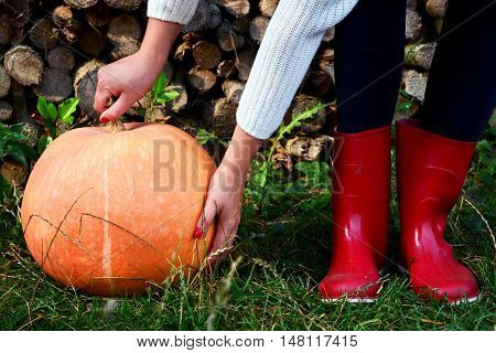 Autumn pumpkin red rain shoes and wooden logs background.