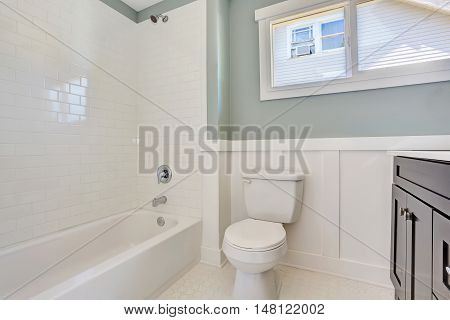 Blue Bathroom Interior With Black Vanity Cabinet, Toilet And White Bath Tub