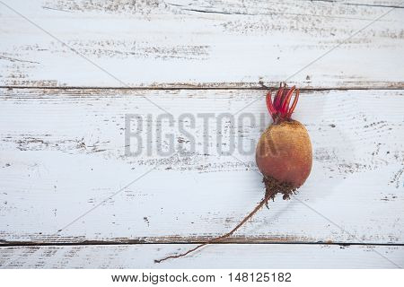 Single raw beet on light blue wooden background
