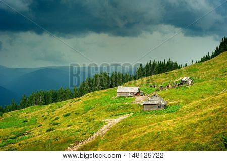 Carpathians Mountains Farm. Ukraine