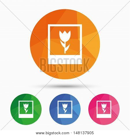 Macro photo frame sign icon. Flower photography symbol. Triangular low poly button with flat icon. Vector
