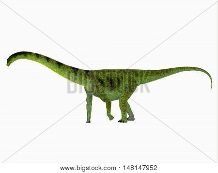 Puertasaurus Dinosaur Side View 3D Illustration - Puertasaurus was a herbivorous sauropod dinosaur that lived in Patagonia in the Cretaceous Period.