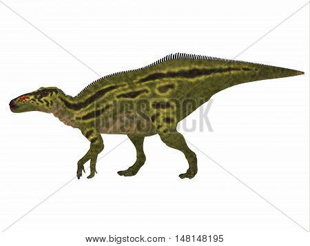 Shantungosaurus Dinosaur Side Profile 3D Illustration - Shantungosaurus was a herbivorous Hadrosaur dinosaur that lived in China in the Cretaceous Period.