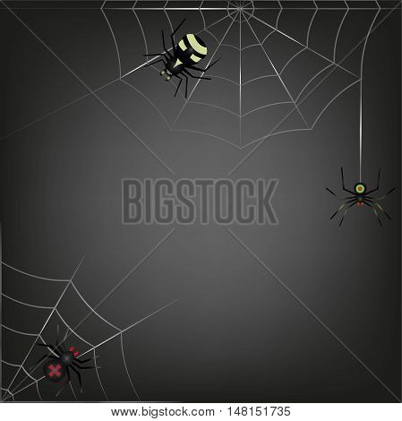 Black Background Of The Three Spider Sitting On Two Webs.