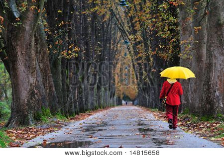 people walking in long alley at fall autumn season representing infinite concept and healthy lifestyle in nature