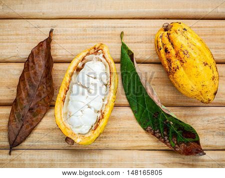 Ripe Indonesia Cocoa And Cocoa Leaves Setup On Rustic Wooden Background.
