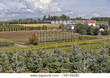 Nurseries and agricultural farmland in Oregon state.