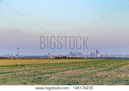 View Of Frankfurt Skyline   By Night