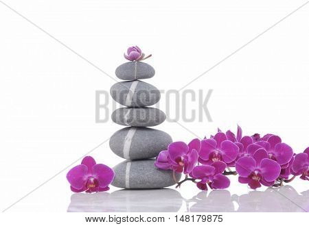Pyramid of striped stones and beauty pink orchid