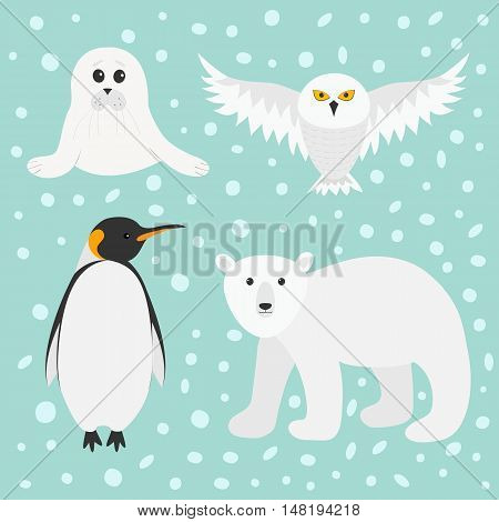 Arctic polar animal set. White bear owl king penguin Emperor Aptenodytes Patagonicus Seal pup baby harp. Kids education cards. Winter antarctica blue snow background Flat design Vector illustration