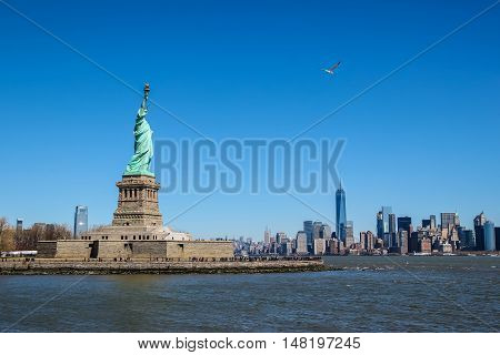 Statue of Liberty with a seagull on a sunny day Manhattan in the background.