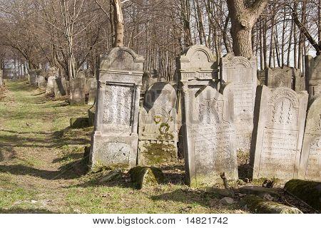Old Jewish cemetery.