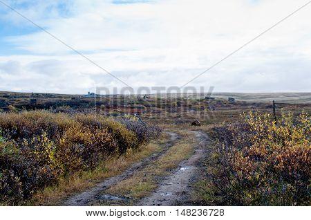 Kola demi-island, Russian north, autumn, abandoned military camp.