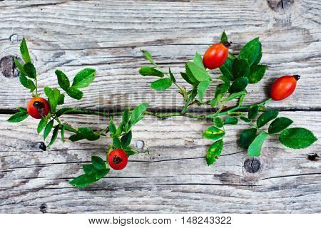 Ripe rosehips on an old wooden table autumn tea