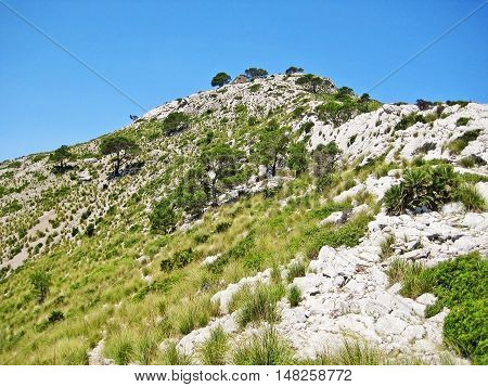 Mountain crest with grass and blue sky - cabin on top