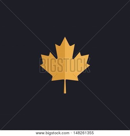 Canadian Leaf Color vector icon on dark background