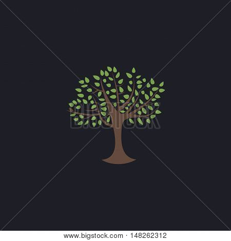 Maple tree Color vector icon on dark background