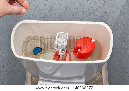 Hand throws a blue cleaner tablet in the water cistern toilet bowl.
