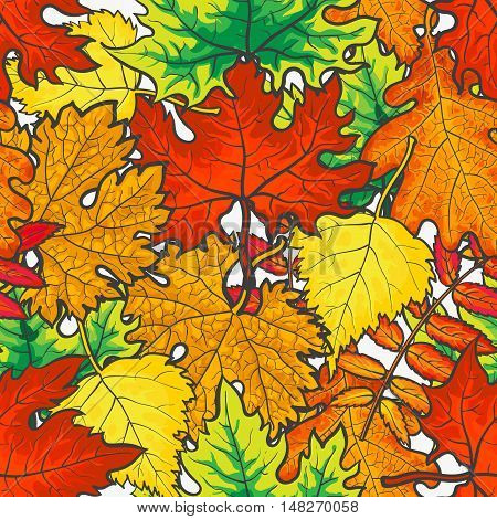Bright and colorful autumn leaves seamless pattern, cartoon style vector illustration isolated on white background. Golden leaves seamless pattern for textile, prints, backgrounds, wrap and cards
