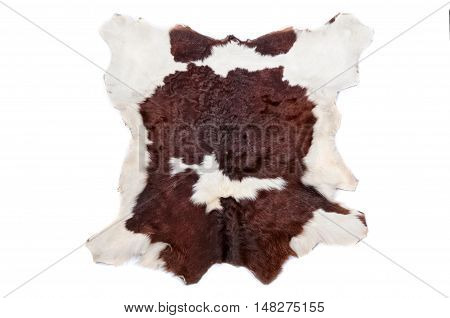 closeup cow fur (skin) background or texture