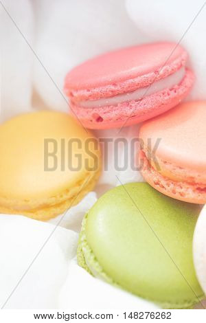 A romantic photoshoot with the colourful macarons