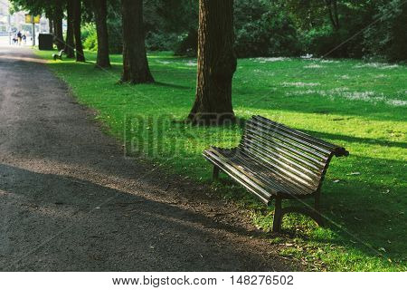 A wooden empty bench in lush green parkland in summer
