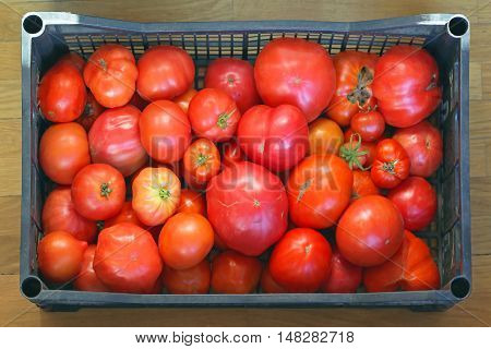 Various Sizes of Red Tomatoes in Crate