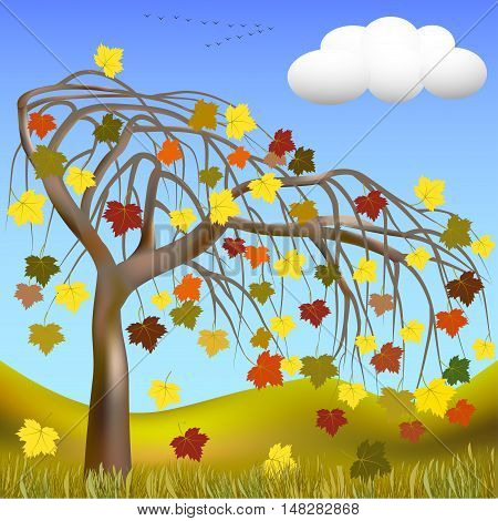 Autumn tree with colorful leaves on a background of hills and grass, cloud, and a flock of migratory birds on the horizon. Vector illustration