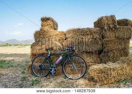 Bicycle and rice fields on countryside field in the summer