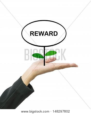 Closeup reward word in circle text box on top of plant on working woman hand isolated on white background in business concept with clipping path