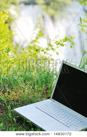 thin modern silver laptop computer in green nature outdoor