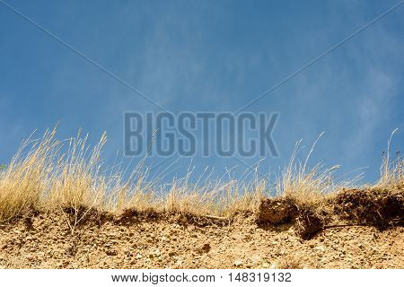 Beach Erosion Cliff Face