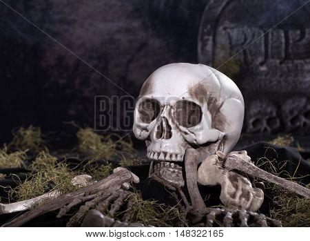 Halloween skull and bones in a graveyard