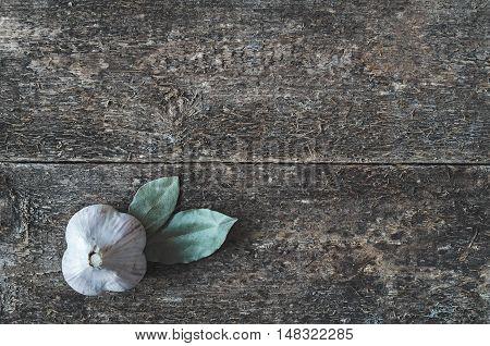 Garlic And Bay Leaf.