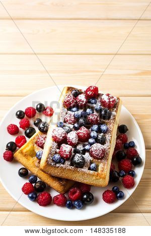 Soft Belgian waffles with blueberry raspberry blackcurrant and caster sugar copy space. Breakfast waffles with fresh berries.