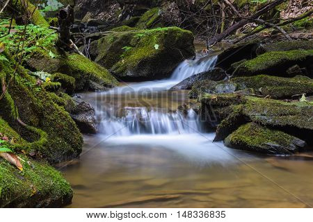A crystal clear mountain stream in the Allegheny Mountains of Pennsylvania.
