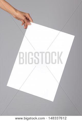 Woman holding a blank poster. Branding, brand, template, identity, design, letterhead, business, envelope, print, mock-up, mock up, mockup.
