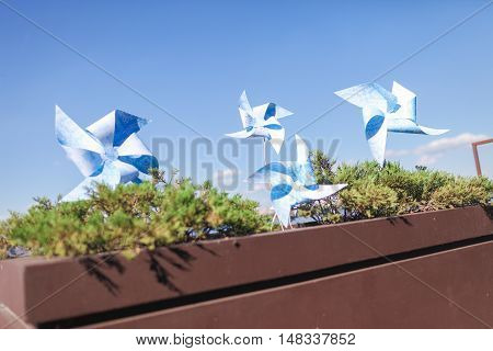 ToToy windmills in a flowerpot with flowersy windmills in a flowerpot with flowers