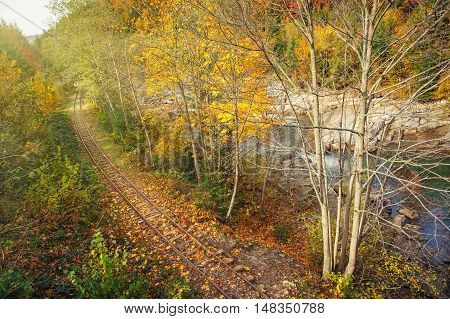 old railway road in beatiful colorful autumn forest, top view