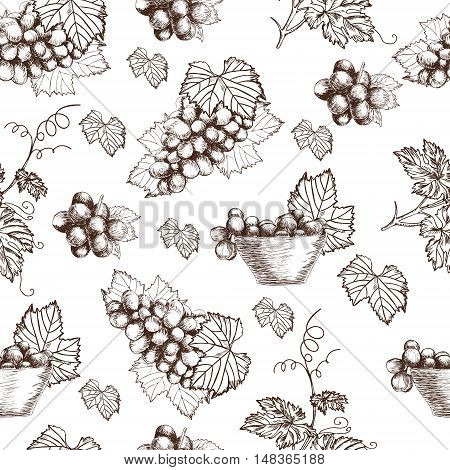Seamless pattern of Bunch grapes sketch style vector illustration. Old engraving imitation. Hand drawn sketch imitation
