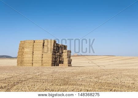 Bale of hay in an agrarian landscape in Ciudad Real Province Spain